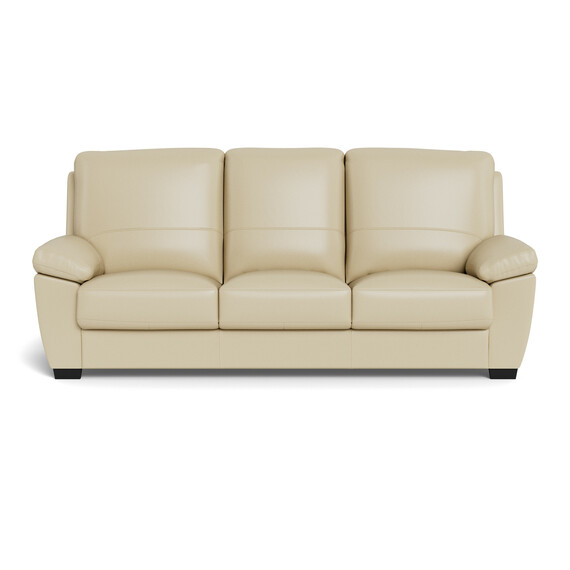 LUCAS Leather Sofabed