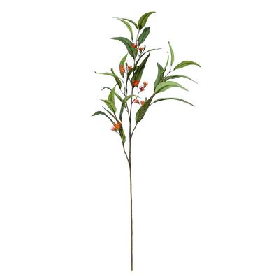ROGUE Flowering Eucalyptus