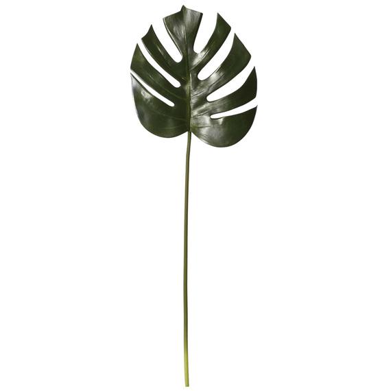 ROGUE Monsteria Leaf