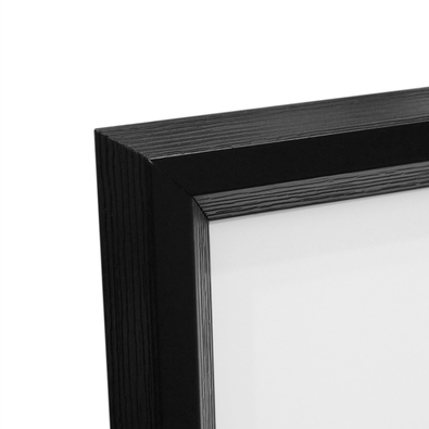 SHADOW SEA FAN Framed Print