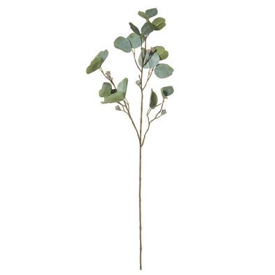 ROGUE Eucalyptus Pod Stem