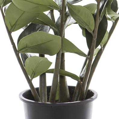 ZANZIBAR GEM Artificial Flower, Green