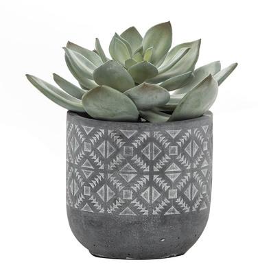 ECHEVERIA Artificial Plant In Pot