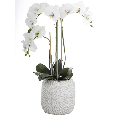 PHALAENOPSIS Artificial Flower In Pot