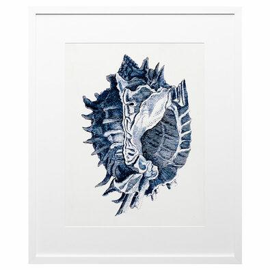COASTAL COLLECTION I Framed Print