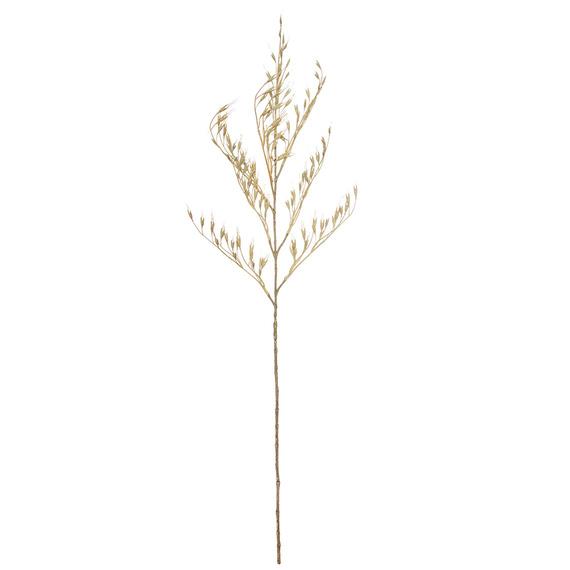 ROGUE Wheat Grass Spray
