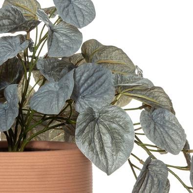 ROGUE ARR Begonia Pot