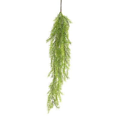 JEWEL Hanging Vine